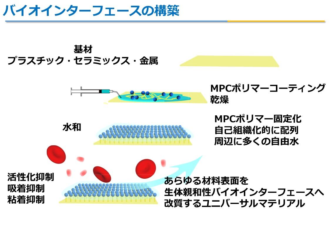 MPCポリマー3