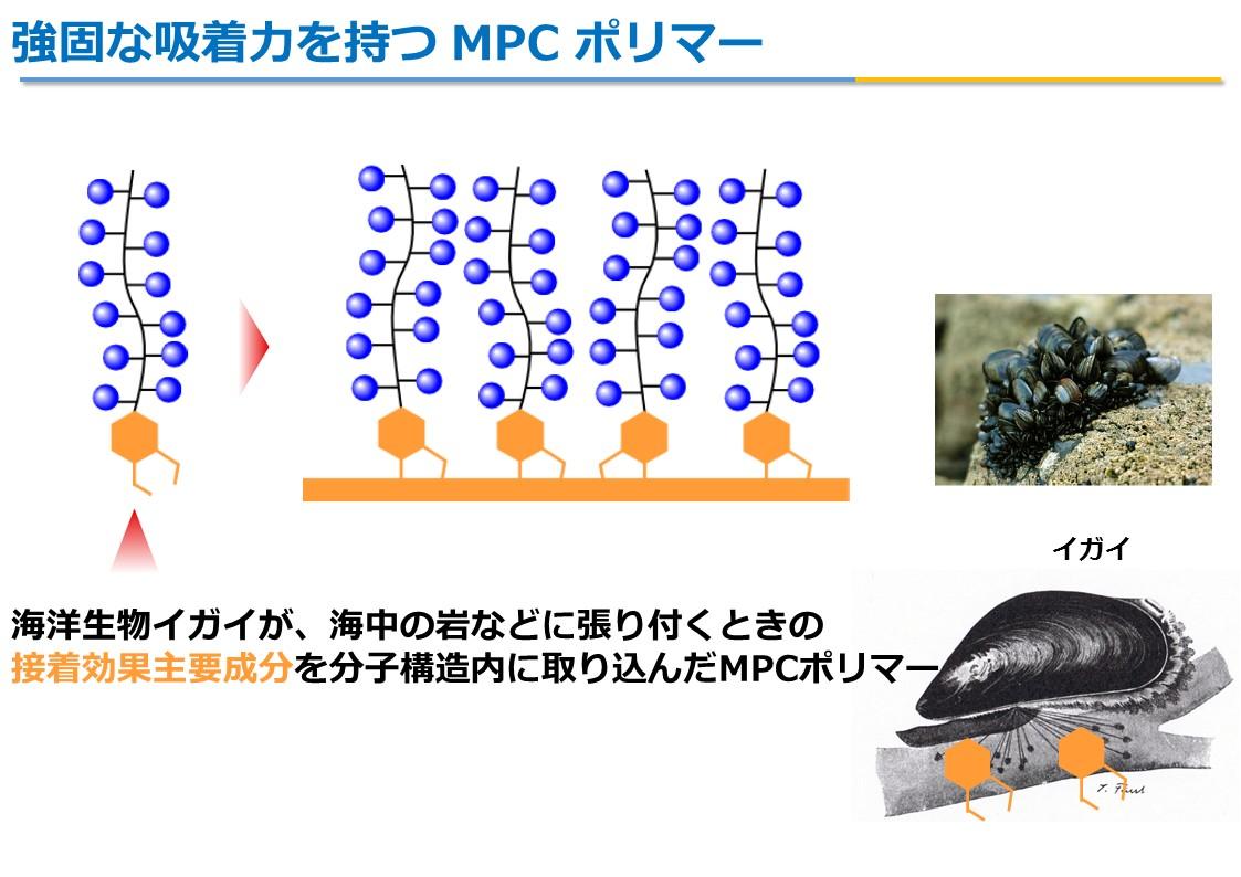 MPCポリマー7